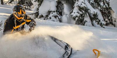 Revelstoke Snowmobile Tours