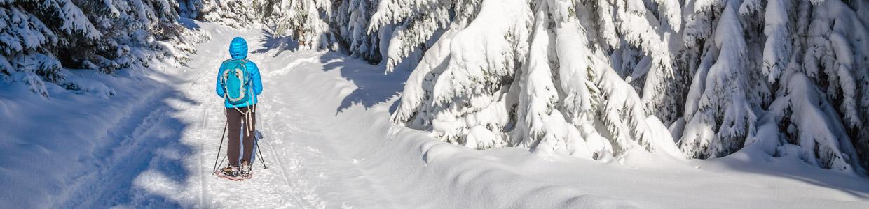 Snowshoeing in Revelstoke