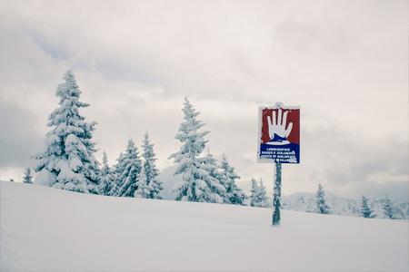 Revelstoke Avalanche Skills Training Level 1