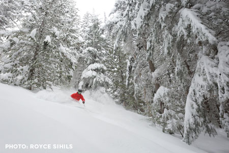 Day Heli Skiing - 3 Run Excursion