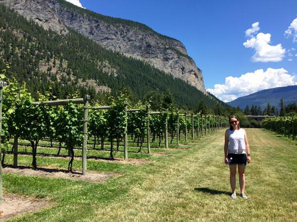Grape Escape Wine Tour