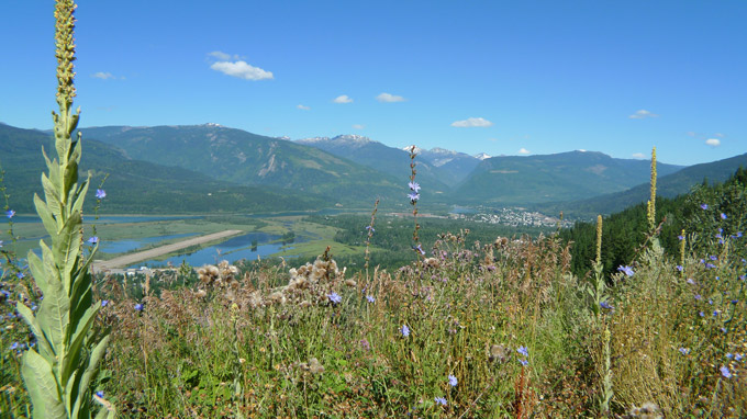 View of Revelstoke