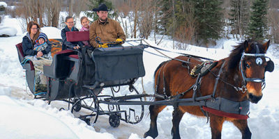 One Horse Open Sleigh Rides in Revelstoke
