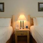 Swiss Chalet 2 Queen Room