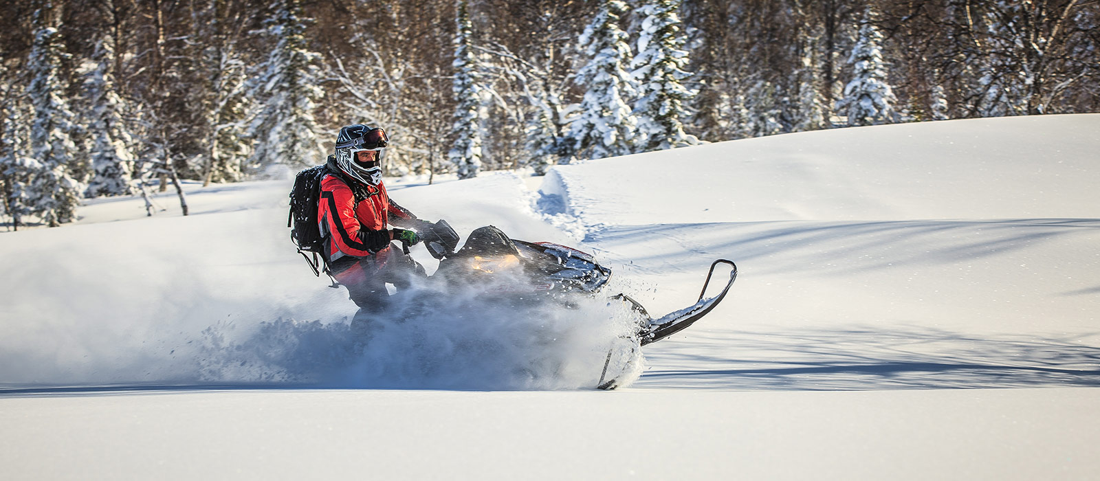 Revelstoke Snowmobile Tours