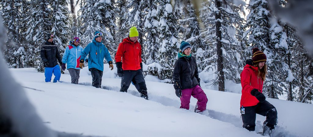 Revelstoke Snow Shoe Tours